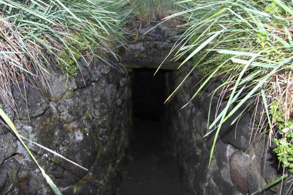 Brunnen Fálki