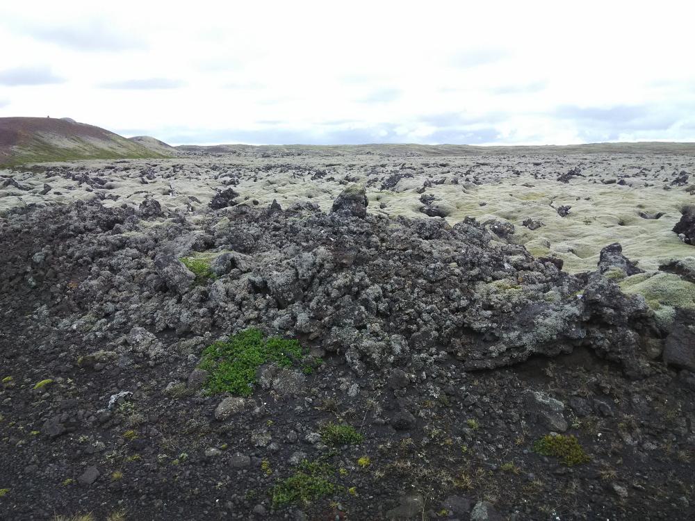 Lavafelder auf Reykjanes