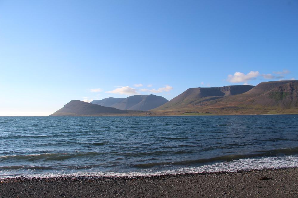 Strand bei Þingeyri