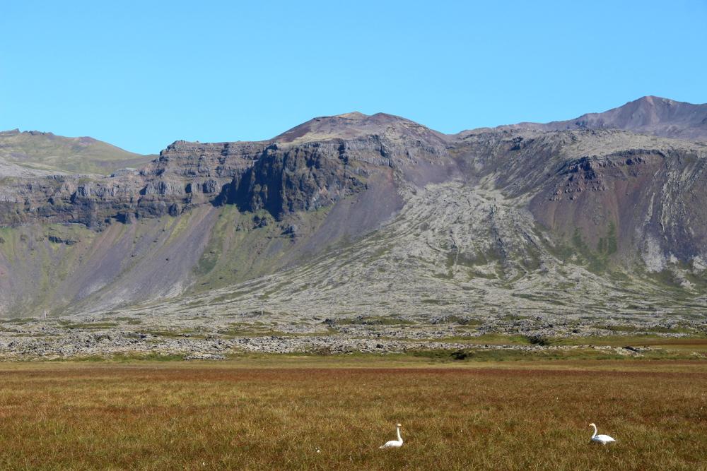 Lava auf Snæfellsnes